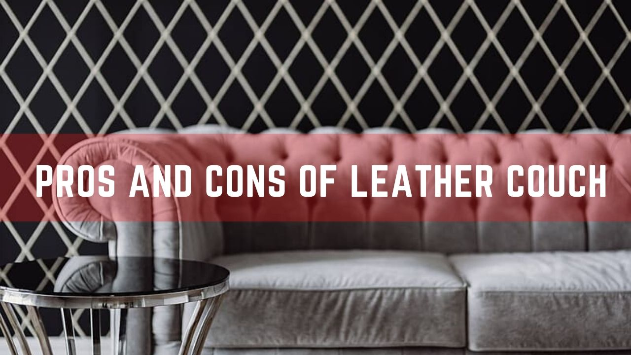 Pros and Cons Of Leather Couch – Detailed Article ( 2020 )