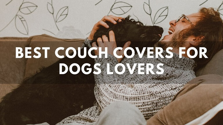 10 Best Couch Covers For Dogs Owners ( Review ) in 2020