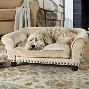 Best Sofa Material For Dogs